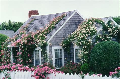 Cottage Cape Cod by Cape Cod Cottage I