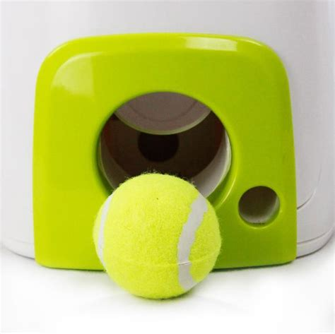 fetch toys all for paws interactive fetch n treat