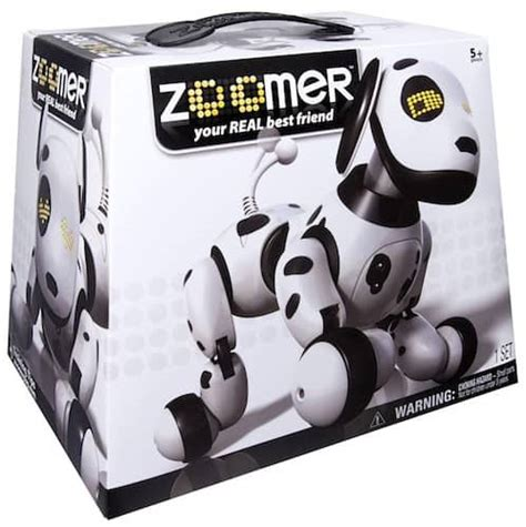 zoomer robot zoomer robot how to find zoomer the robot before