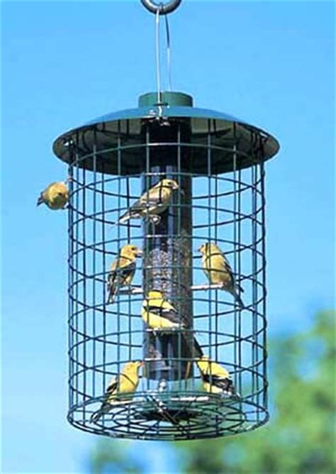 Enclosed Bird Feeder Duncraft Duncraft 1590 Nyjer Selective Bird Feeder