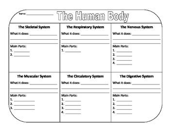body biography graphic organizer this graphic organizer goes along with quot the human body