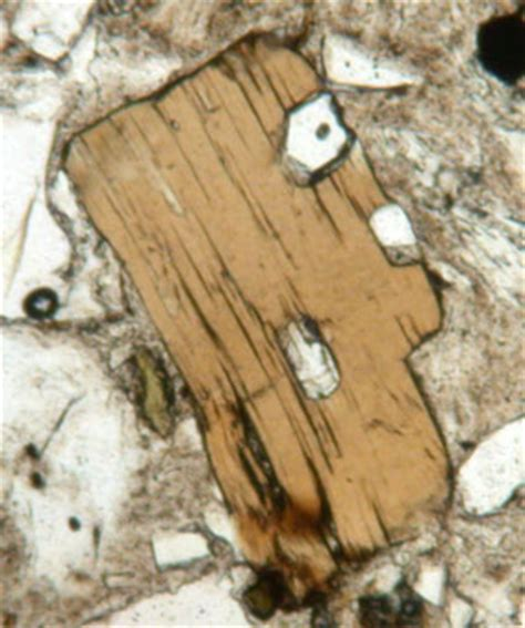 biotite thin section biotite