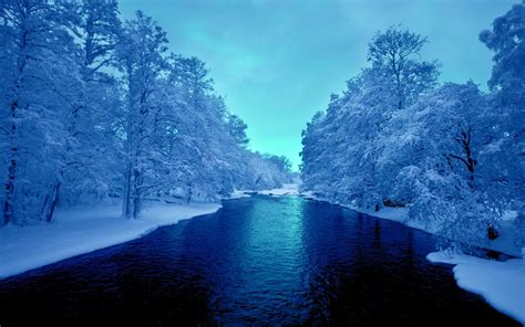 blue trees blue river white trees wallpapers blue river