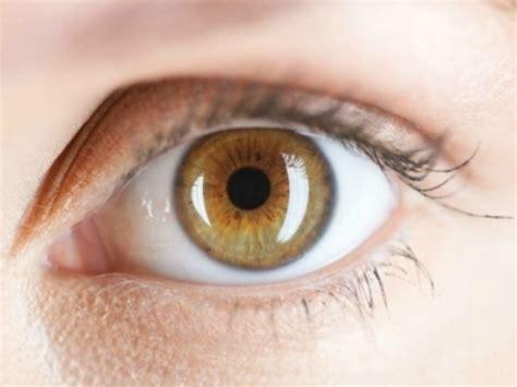 Bulu Mata Elise 823 By Memora your can predict stroke risk indiatimes