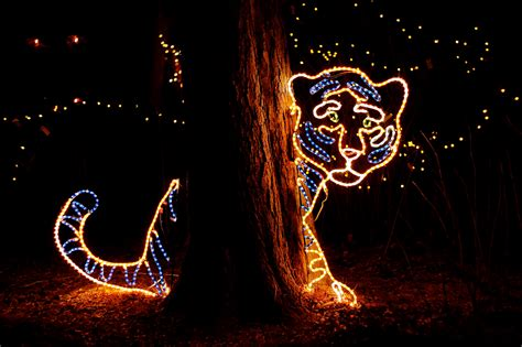 denver zoo lights tickets things to do in denver this friday saturday and sunday