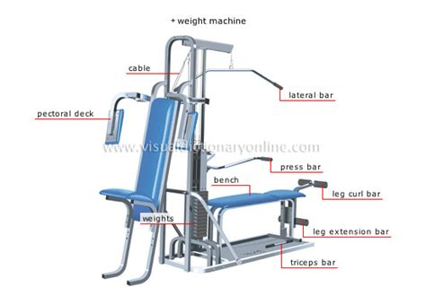bench strength definition sports games strength sports fitness equipment 6