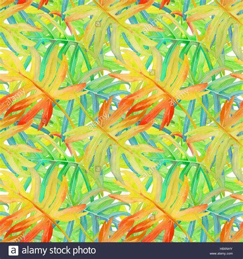 dschungel pflanzen tropische bl 228 tter pflanzen auf einem wilden dschungel