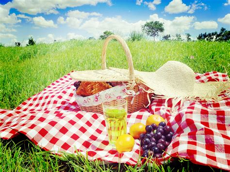 The Ideal Picnic Get It On The High Now by 47 Picnic Picnic High Quality Wallpapers Free