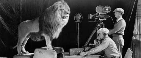 lion film hollywood the story of the mgm lion esquire middle east