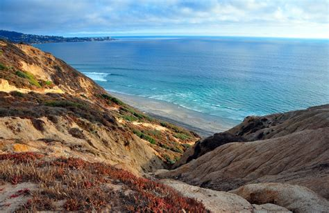 black beaches black s la jolla ca california beaches