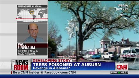 auburn fans in bushes auburn fans rally for famous trees cnn com