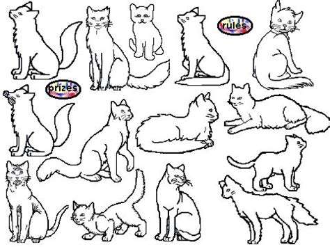 warrior cats coloring pages  print enjoy coloring