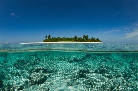 corona  parley   oceans