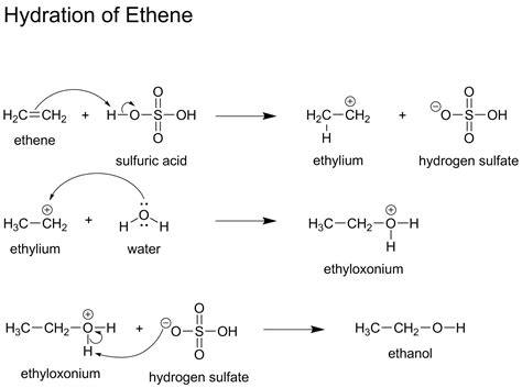 hydration reaction mechanism organic chemistry what would be the correct mechanism