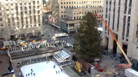 when do they take down the rockerfella christmas trees rockefeller center tree taken nbc new york