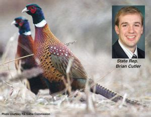 lifetime license pa bill would decision on senior lifetime license holders pheasant st in