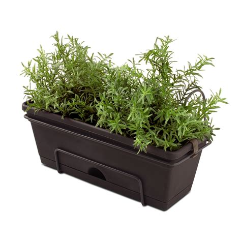 herb planters whites outdoor garden up herb planter bunnings warehouse