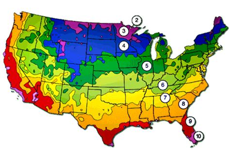 usda zone map seed germination learn the steps of seed germination and growing indoors