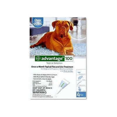 flea medicine for puppies program pill for fleas coursesmanager