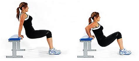 dips off bench tricep bench dips for toned arms tricep dips get your
