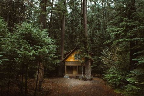 Secluded Cabins by Secluded Cabins In The Woods That Are For A