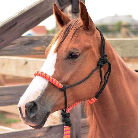 rope horse halter orangefuchsia item
