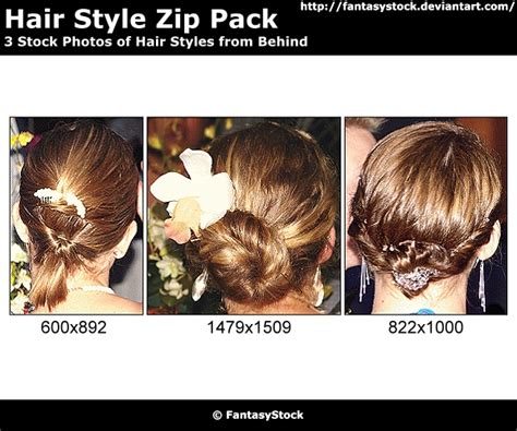 zip hair styl formal hair style zip pack by fantasystock on deviantart