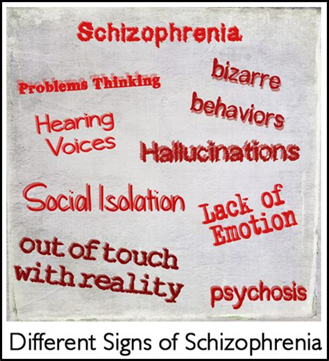 beyond schizophrenia living and working with a serious mental illness books schizophrenia the most common mental illness