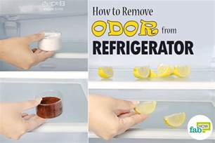 Remove Smell From by How To Remove Odor From Refrigerator Using Just 1