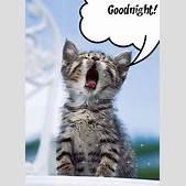 Good Night Glit...