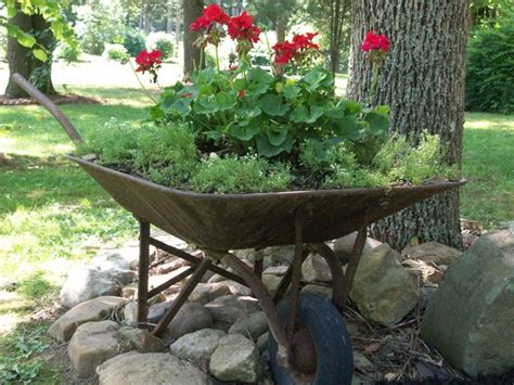 wheelbarrow garden ideas 25 best ideas about wheelbarrow decor on