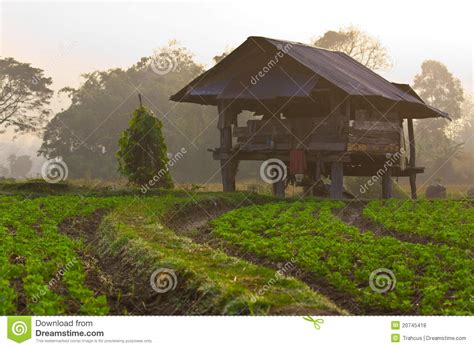 Morning Cabins by Cabin In The Morning Royalty Free Stock Photos Image