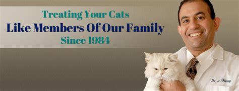 drive and cat hospital lincoln avenue cat hospital fairlawn nj veterinarian