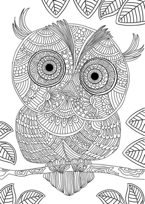 willow s world coloring book owls books coloring owl designs and coloring books on