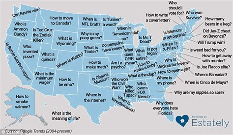What Do Search For The Most On The Reveals The Most Misspelled Words In Each Us Region Daily Mail
