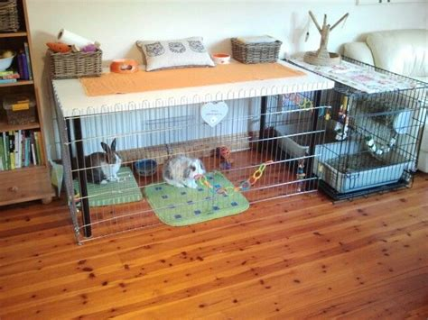 ikea hack dog house pin by nicola metadjer on house rabbits pinterest