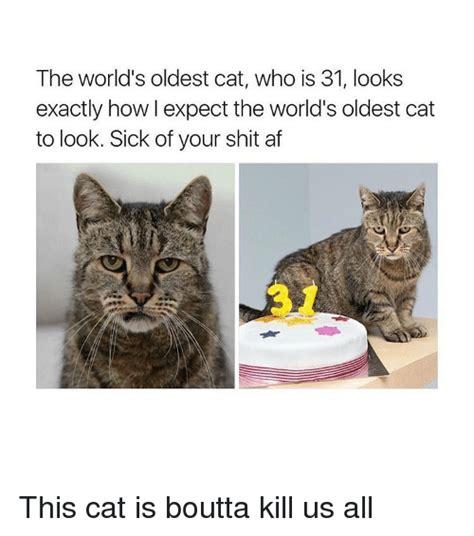 Oldest Memes - mistrzowie org forum zobacz temat quot śmieszne quot obrazki