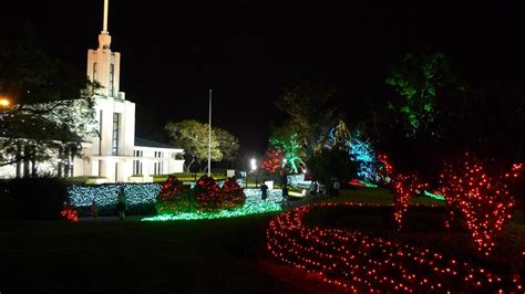 sydney temple christmas lights and art display begins 1st