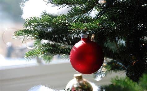bola roja en el 225 rbol de navidad fondos de escritorio
