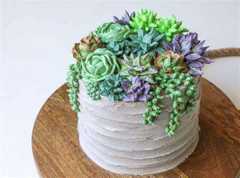 Draping Tutorial Succulent Cake Buttercream Piping Tutorial