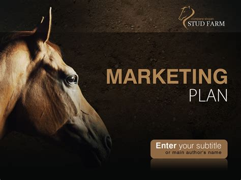 Powerpoint Themes Horse | horse powerpoint template 31928