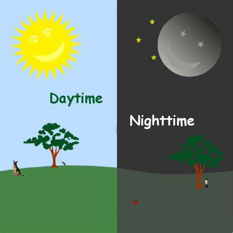 daytime nighttime book 310952 bookemon