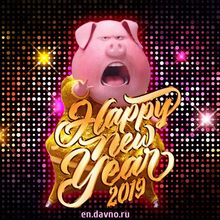 dancing pig funny happy  year  animated gif   davno