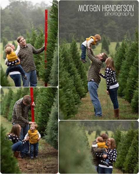 raleigh tree farm the spirit henderson photography