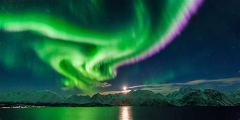 bergen northern lights northern lights in lyngenfjord official travel guide to