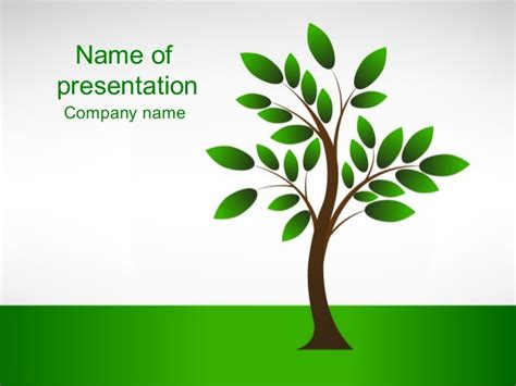 Powerpoint Tree Template new tree powerpoint template whiteboard freeforums org