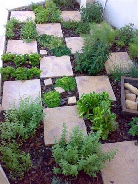 Gartenkräuter Pflanzen by Die Besten 20 Kr 228 Utergarten Ideen Auf Kr 228 Uter