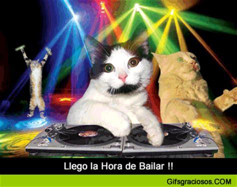 imagenes uñas gatos imagenes lindas para compartir fb gifs graciosos de gatos