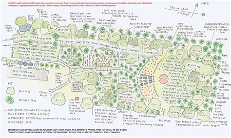 forest nursery layout plan daylesford community food garden a forest garden