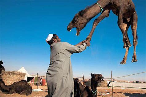fotos reyes magos en camellos los reyes magos s 237 existen la conspiraci 243 n al
